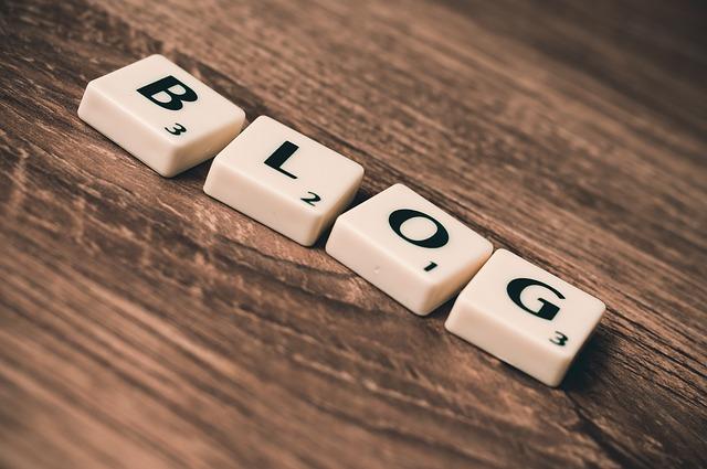 rédacteur blog lesmotsclesroi